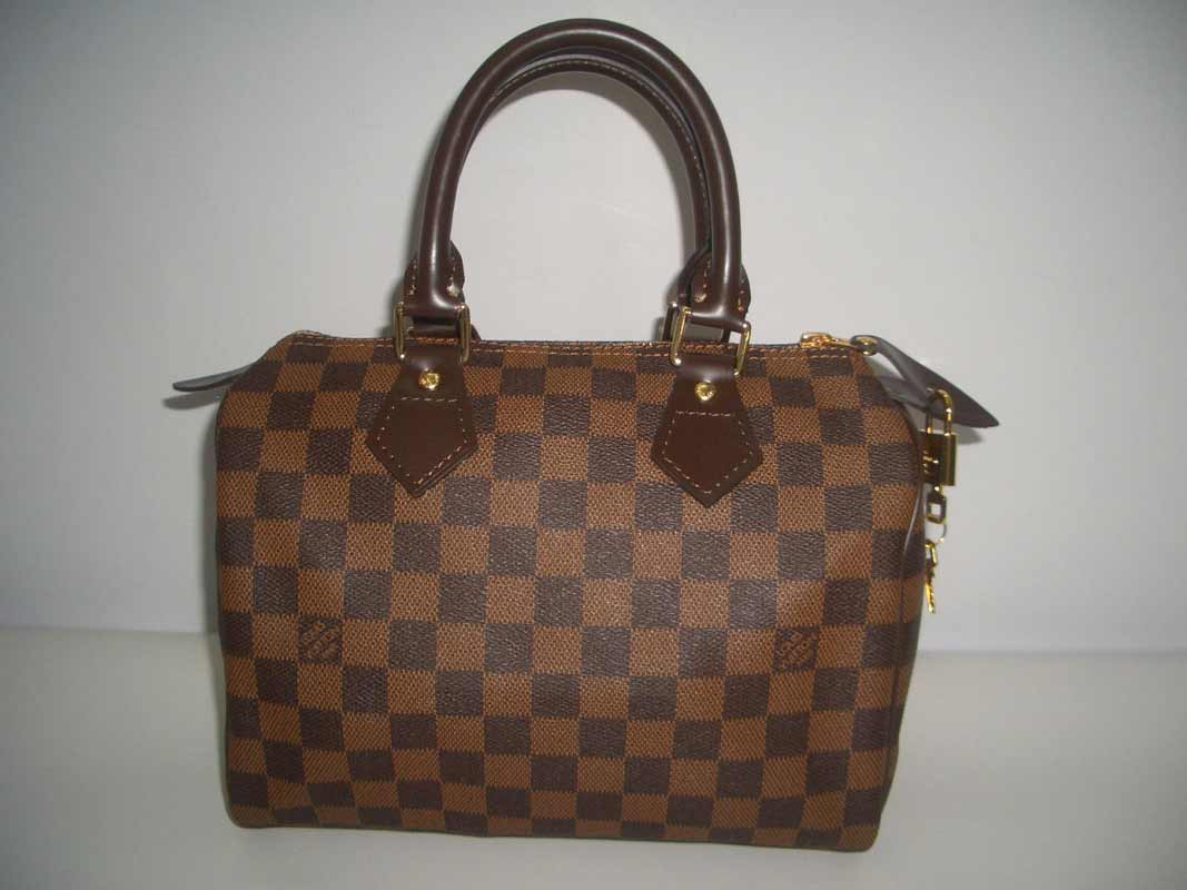 LV Damier Eben Canvas Speedy 25  N41532