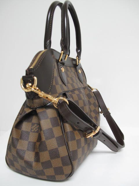 LV Damier Eben Canvas Berkeley Ebony  N52000